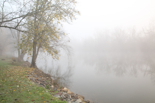 Fog on the Pigeon River in Seiverville